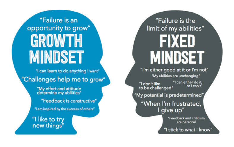 How trainable is Mindset?